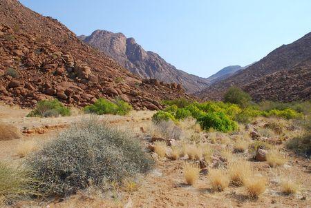 Namibie__24_