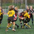 36IMG_1510T