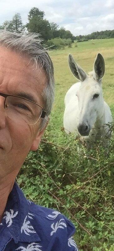 mon âne... à moi JCM