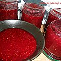0215 Confiture de fruits rouges TMX