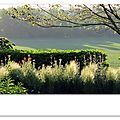 13-06-11, Un jardin sous le ciel (d)