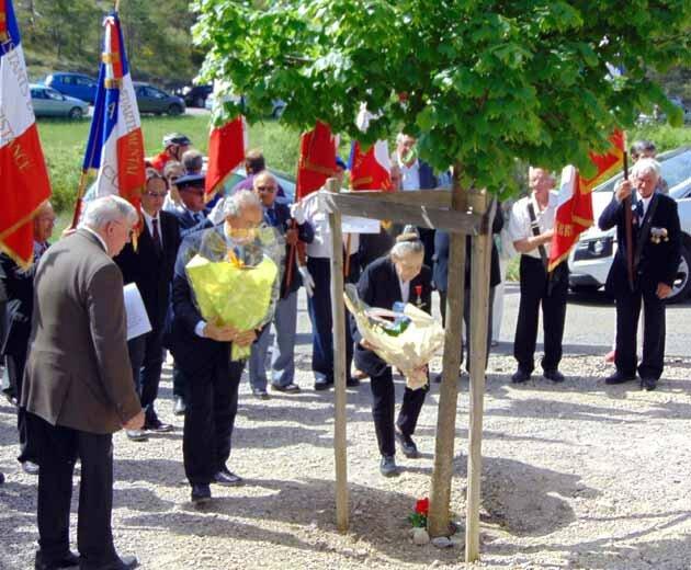 Les bouquets des CVR de Vaucluse et du CURD-Eygalayes 2015