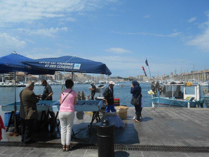 Vieux Port (3)