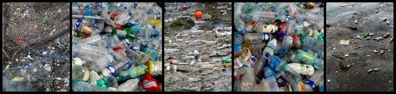 Bouteilles plastiques sur la Seine