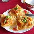 Fried Won Tons in Hoi An