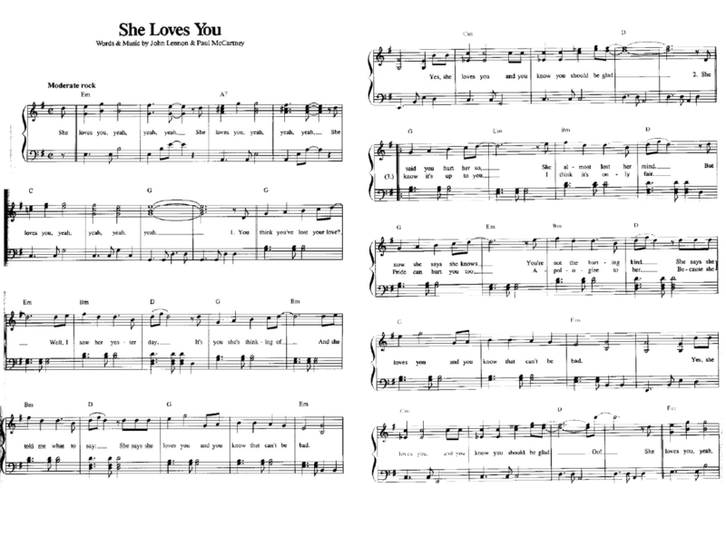 She loves you 01