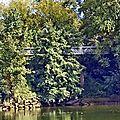 Sur la Garonne 26 septembre 2015 SANDRINE (57)