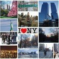 NY For Ever