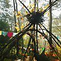 arbre au nid chataigner 3