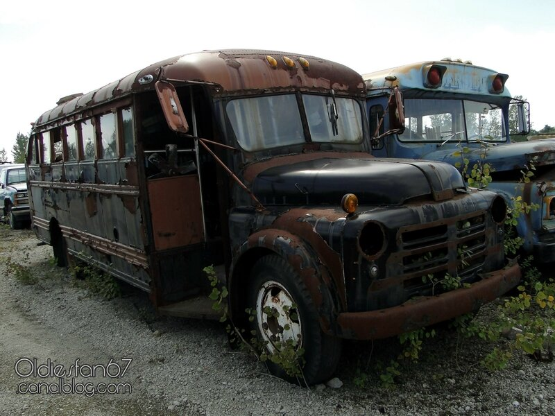 dodge-b-school-bus-1950-1