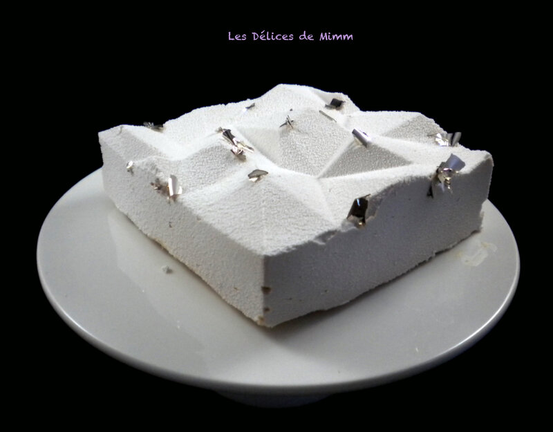 L'iceberg (entremets au gianduja) 2