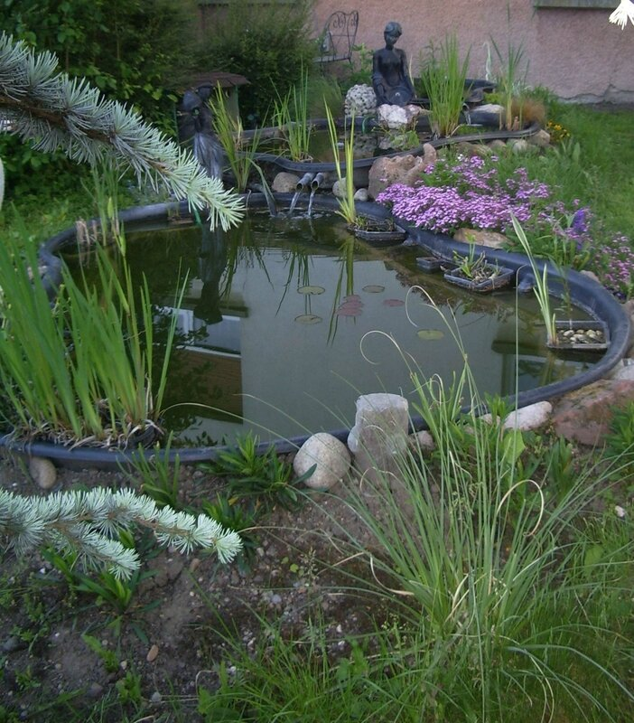 Jardin 2016-05-03 17-24-01_0169