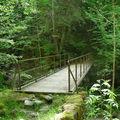 petit pont sur le Fier Sentier N° 4