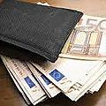 Porte feuille magique multiplicateur en euros et dollars
