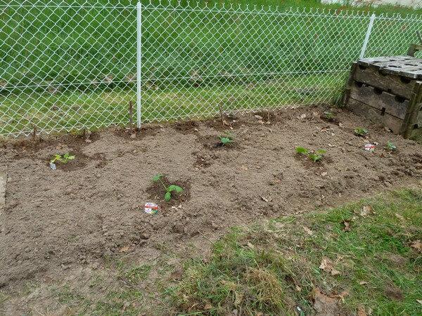 planche compost