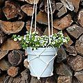 Id déco : un pot de fleurs et macramé