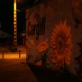 Nuit-sur-les-docks-20