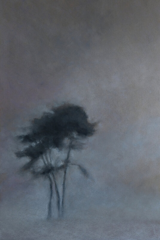 fog in trees, fev 2018, pastel à l'huile, 32 x 45 cm