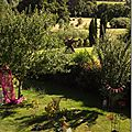 Windows-Live-Writer/jardin_D005/DSCF3978_thumb