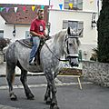 6-chevaux anes (11)