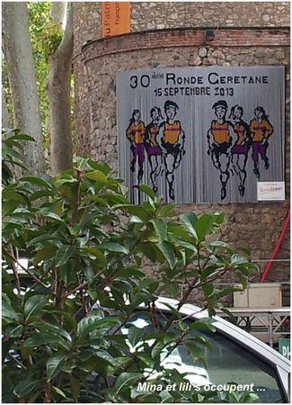 2013 09 Collioure31