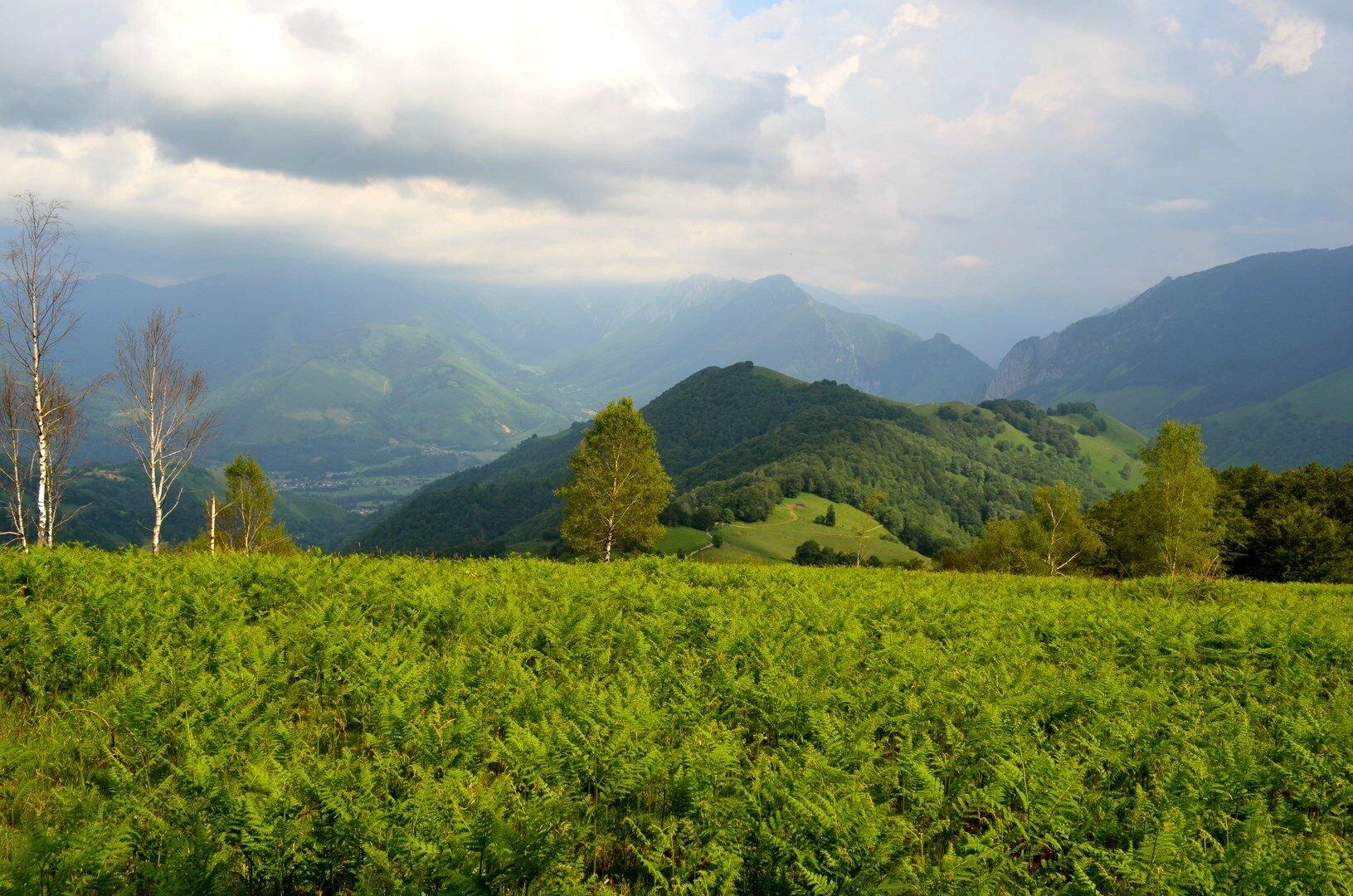 Vers la vallée d'Aspe...