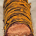Bûche trianon ou royal chocolat