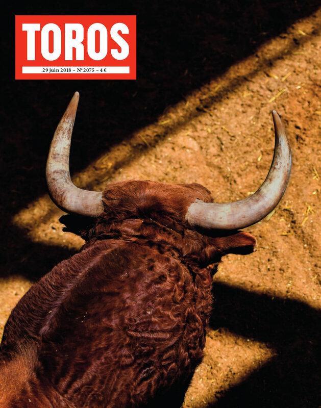 TOROS_2075