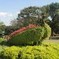 Le jardin botanique a Jungmun