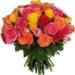 fleurs_la_brass__des_ROSES