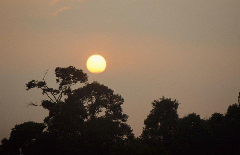 Coucher de soleil_Taman Negara_XRu