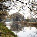 canal_green4