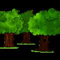 Les forêts du sénateur