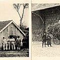 Versailles, Camp de Satory, Album carte-lettre militaire du 43e RAC, Cuisines, Corvée de fourrages
