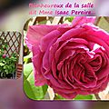 balanicole_2016_02_fevrier_rosiers1_28_isaac Pereire1