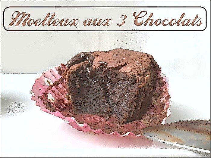gâteau fondant aux 3 chocolats 1