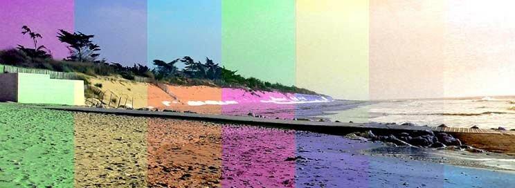plagecolor