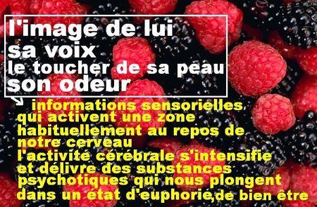 berries22