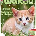Wakou-decembre-14-chaton-817x1024