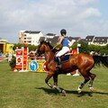 070519_114_Cheval