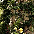Windows-Live-Writer/jardin_D005/DSCF3912