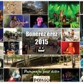 BonneAnneePonso2015