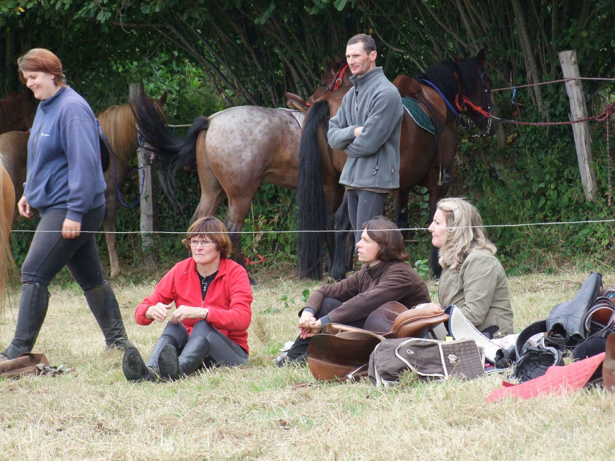 équitation d'extérieur - parcours en terrain varié (217)
