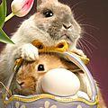 Joyeuses pâques !!!!