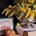 Mon premier bouquet de mimosa