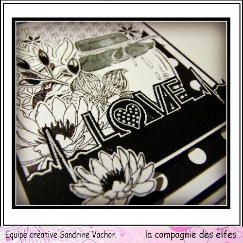 Sandrine VACHON carte N&B dt LCDE (3)