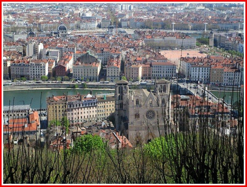 Lyon6