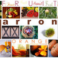 Fruit - marron - orange