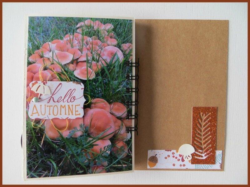 Album Hello Automne (22)