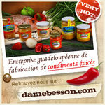 damebesson_pub_250x250